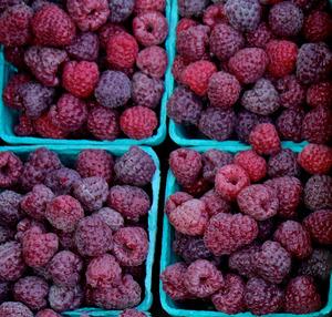 Raspberry Royalty
